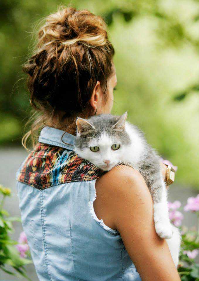 animal communication cat
