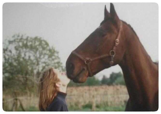 animal communicator horse