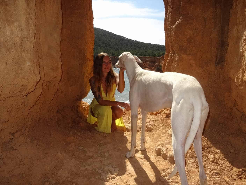 ibiza animal rescue